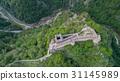 ruined Poenari Castle on Mount Cetatea in Romania 31145989