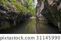 Corcoaia Gorge, Romania. 31145990