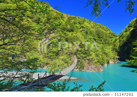 Suspension bridge under the clear weather - Stock Photo [31147202