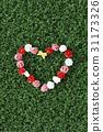 로맨틱, 사랑, 장미 31173326