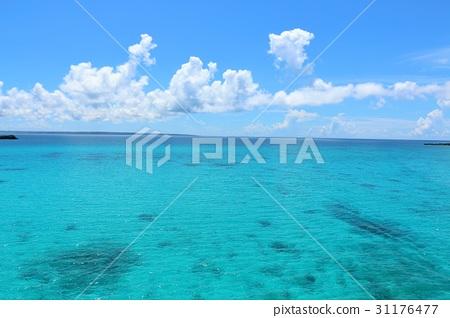 沖繩藍天和藍色海風景 31176477