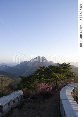 북한산성,북한산,서울 31181384
