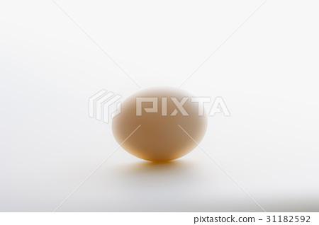 달걀 31182592