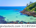 모래, 해변, 바다 31185564