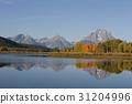 미국, 산, 옐로스톤국립공원 31204996