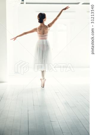 芭蕾舞女演員 31213540
