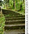 石板梯 31215657