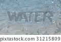 투명한 물 31215809
