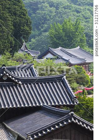 선암사,순천시,전남 31217766