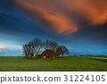 farm, rural, countryside 31224105