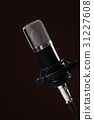 Microphone 31227608