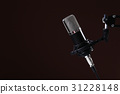 Microphone 31228148