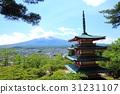 mt. arayama sengen park, fujiyoshida city, mountain fuji 31231107