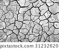 cracked soil 31232620
