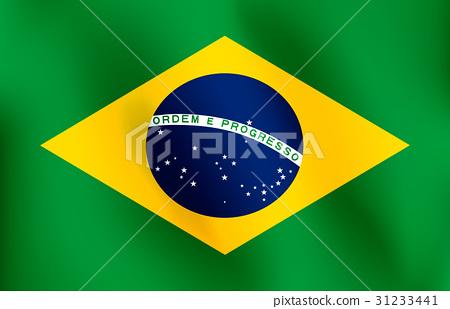 Flag of Brazil - Vector Illustration 31233441