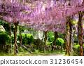 Wisteria trellis at Onomichi Senkoji Park 31236454