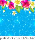 leaf, flower, blue 31245147
