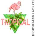 leaf, flamingo, floral 31245164