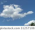 蓝天 蓝蓝的天空 蓝色 31257106