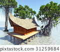House on stilts in the mangrove forest. Beach 31259684