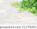 白色五谷和植物背景 31276491