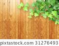 พื้นหลังลายไม้และพืช 31276493