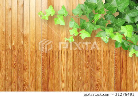 木五谷和植物背景 31276493