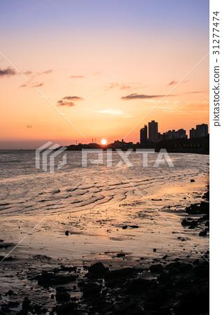 台灣 淡水 河岸 夕陽 日落 黃昏 海 魚 建築 房子 大樓 31277474
