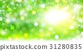 신록 잎 풍경 배경 31280835