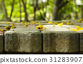 flowers on the brick block background tree blurred 31283907