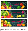 Vector banners of exotic fresh fruits 31285603
