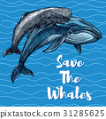 Vector poster for whales saving 31285625