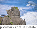 Pancake Rocks, Punakaiki, New Zealand 31290462