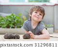 Little boy playing with hedgehog 31296811