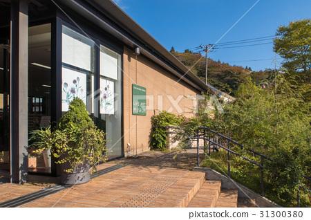 Building of Ashinoko Terrace 31300380