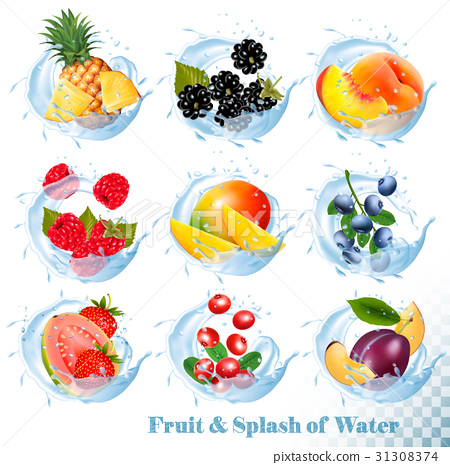 Big collection of fruit in a water splash icons.  31308374