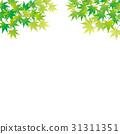 green maple leaf 31311351