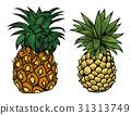 Cartoon pineapple fruit 31313749