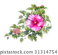 watercolor painting of leaves and flower, on white 31314754