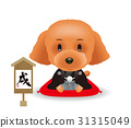 year of the dog, toy poodle, dog 31315049