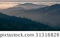 Bolinas Ridge, Calfiornia 31316826