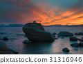 Bonsai Rock in Lake Tahoe 31316946