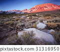 Buttermilk Hill in Bishop California 31316950