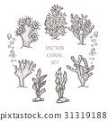 Hand drawn aquatic coral doodle vector 31319188