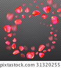 A lot of falling red rose petals on transparent 31320255