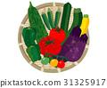 夏季蔬菜 夏令时蔬 蔬菜 31325917