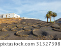 Volcanic landscape of Lanzarote, Canary, Spain 31327398