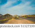 Volcanic landscape of Lanzarote, Canary, Spain 31327399