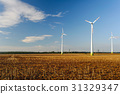 Agriculture landscape with wind turbines 31329347