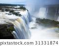 Brazil, Iguazu, Falls 31331874